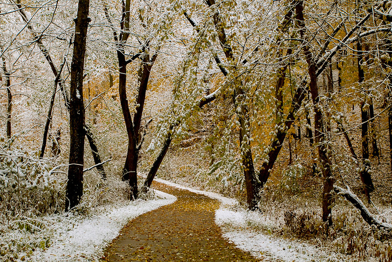 October leaf and snow covered path