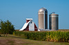 A barn and silos near Williamsburg, Iowa, USA, America.