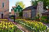 Dutch architecture and tulip gardens at the Tulip Time Festival in Pella, Iowa, USA, America.