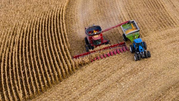 Anthon, Iowa Harvest 2019.