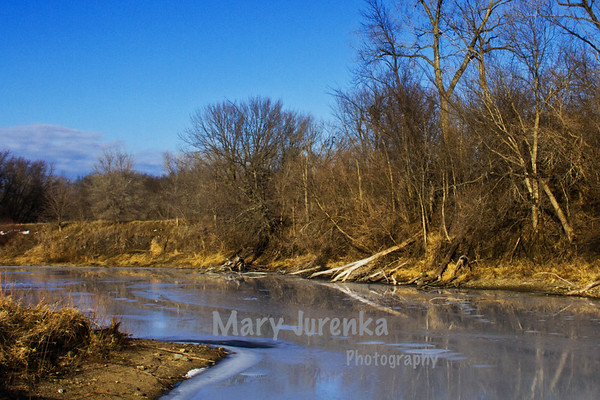 This was photographed at Peterson Park in Ames Iowa in the winter of 2013.