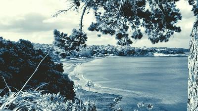 Browns Bay Bluetone - No Frame