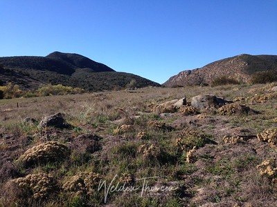 Mission Trails Regional Park, Santee, California
