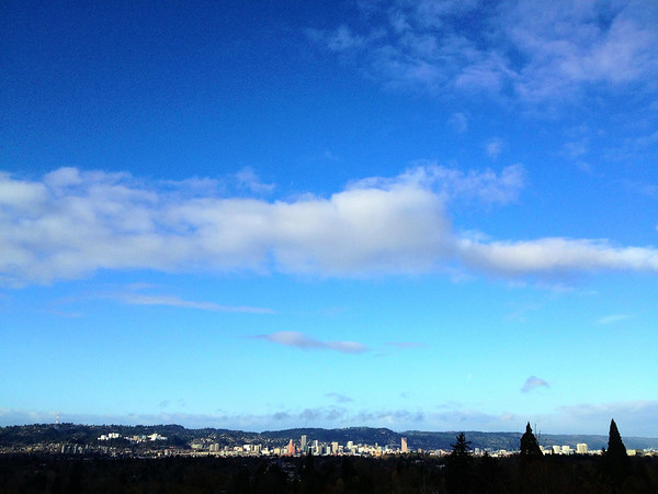 Portland From a Distance
