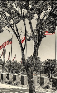 'Westwood' Memorial, Los Angeles, CA'