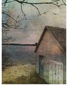 'Winter Pondscape'