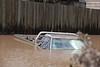 Ute flooded in Gailes Caravan Park, Brisbane Rd Gailes - 13 Jan 2011