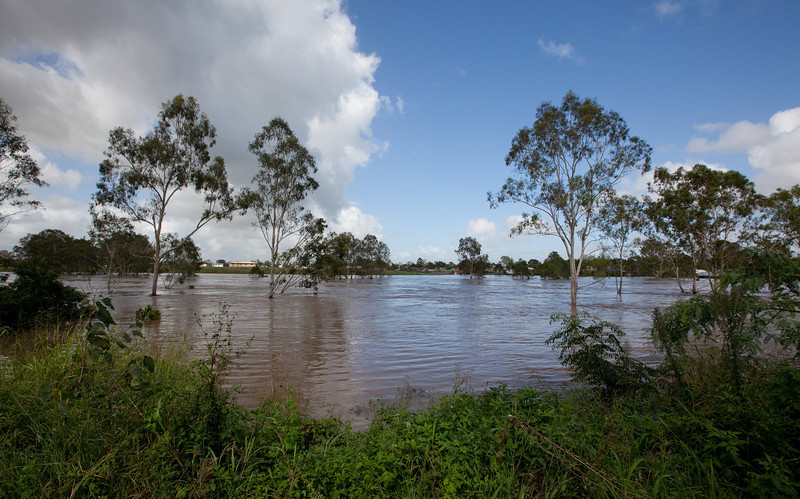 Bremer River at the end of Perry St Churchill - 12 Jan 2011