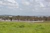 Taken from Goddards Rd Yamanto looking towards RAAF base Amberley - 12 Jan 2011