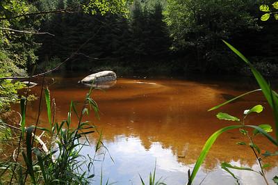 Flussporträt: Der Kamp