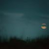Pre-Dawn Moon II