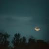 Pre-Dawn Moon I