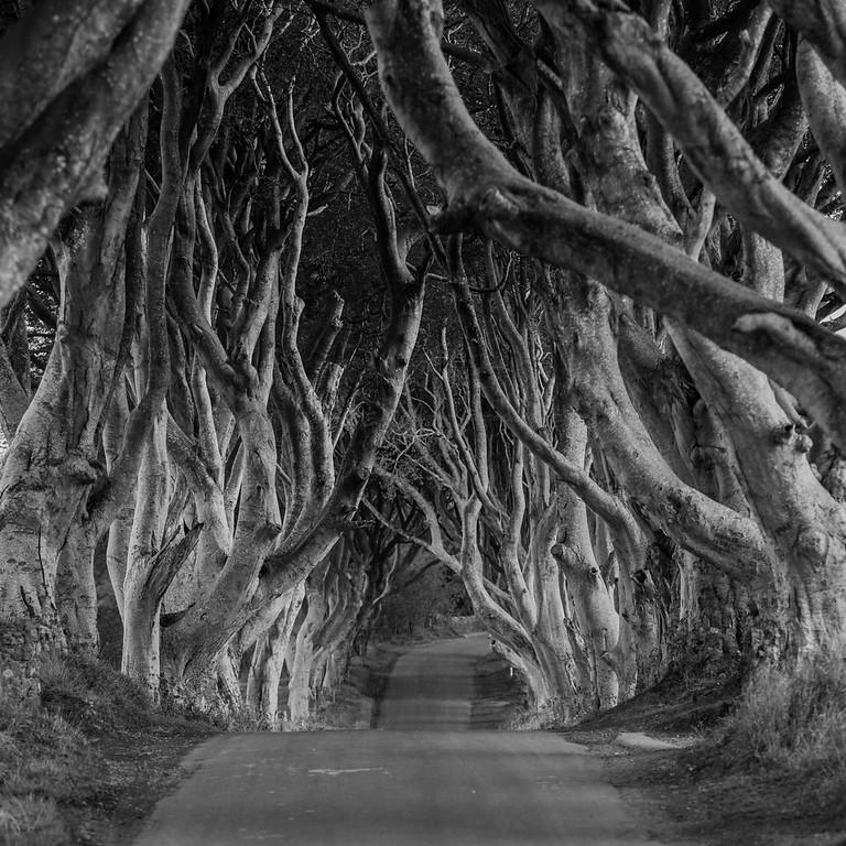 Ireland - 2015