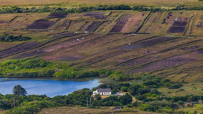 Peat Harvesting, Connemara, Ireland