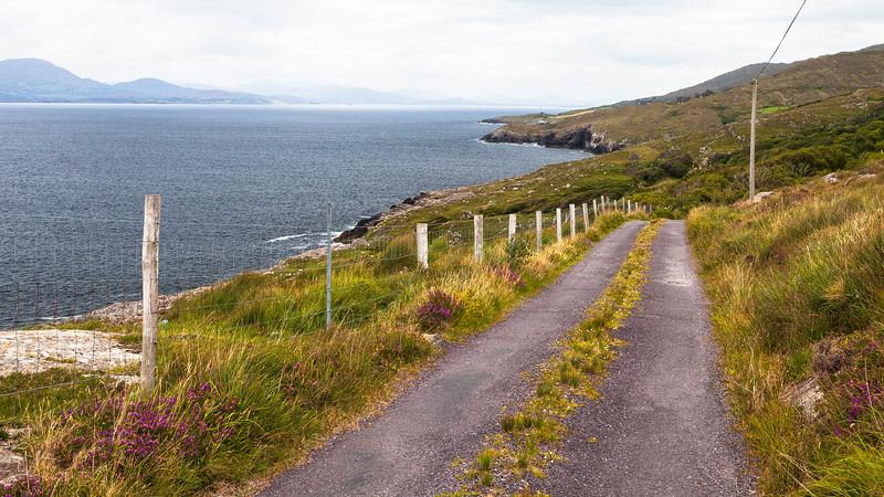 Goat's Path Road, Sheep's Head, Ireland