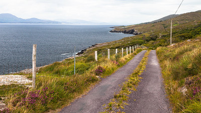 Goat's Path Road, Sheep's Head, Ireland