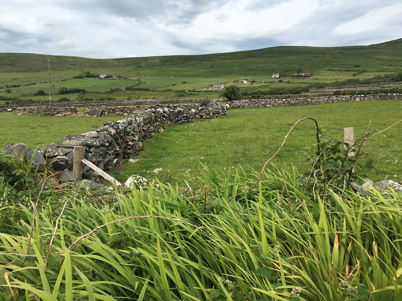 stone fences were for clearing the land, not just fencing