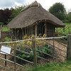 re-creation of viking wood house