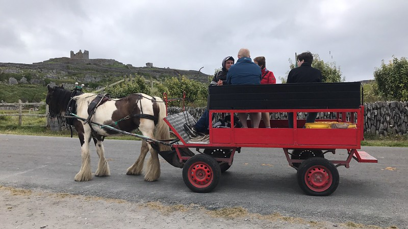 The locals seem to work two jobs.  The second being catering to the tourists.  We caught this buggy at the port and rode around the island.