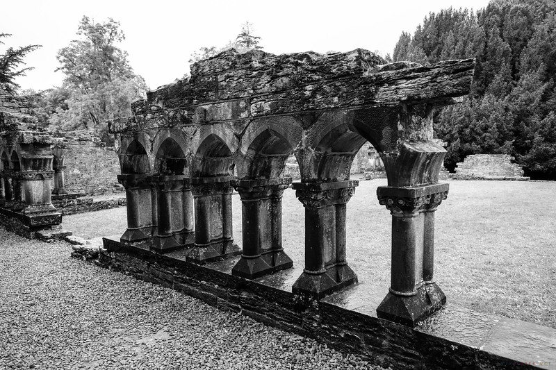 Ruins of Cong Abbey
