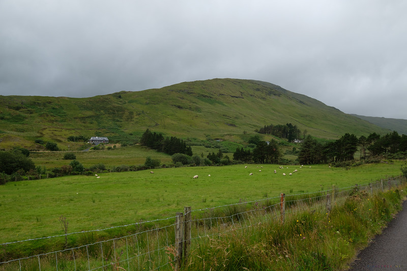 After leaving Cong, we made our way West to Kylemore Abbey.  All along the route, we  saw gorgeous scenery like this.