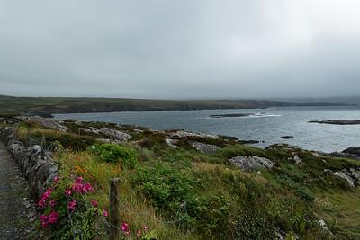 Beara Peninsula Ireland July 2013 -007