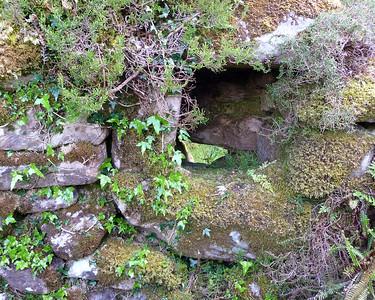 Bonane Heritage Park, County Kerry, Ireland