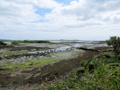 Approaching Strangford Lough
