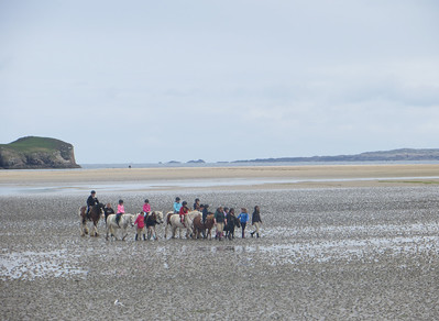 Pony trekking on the beach at Dunfanaghy