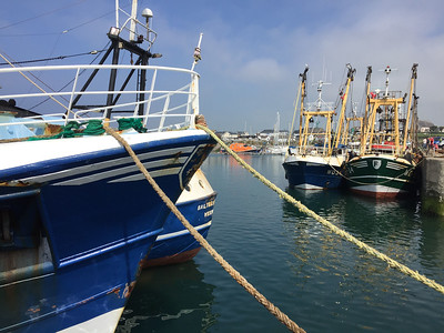 Fishing boats at Kilmore Quay
