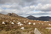 Slieve Binnian, The Mourne Mountains, Down, Northern Ireland.