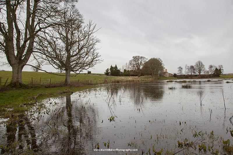 Castleward Estate, Strangford, Down, Northern Ireland.