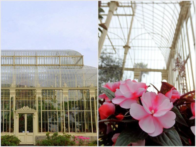 Visiting the Botanic Gardens in Dublin