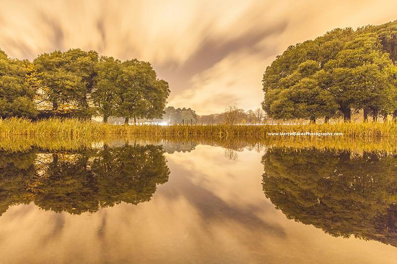 Citadel Pond, Phoenix Park, Dublin, Ireland.