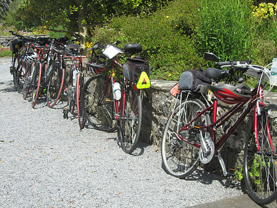 Bikes lined up at our lunch stop
