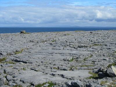 . . . which included the limestone landscape . . .