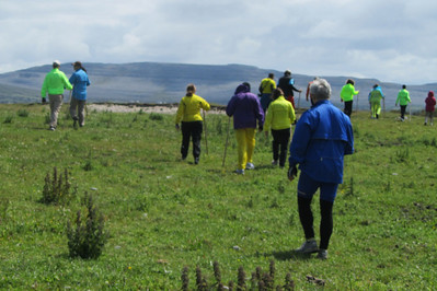 Taking a hike through the Burren to see the flora and fauna . . .