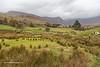 Glencoaghan Horseshoe Valley and the Twelve Bens, Connemara, Galway, Ireland.