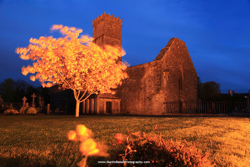 St. Mary's Abbey, Loughrea, Galway, Ireland.