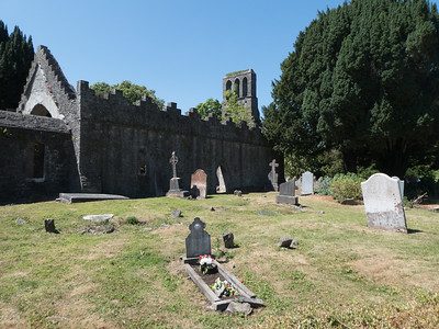 Malahide Abbey