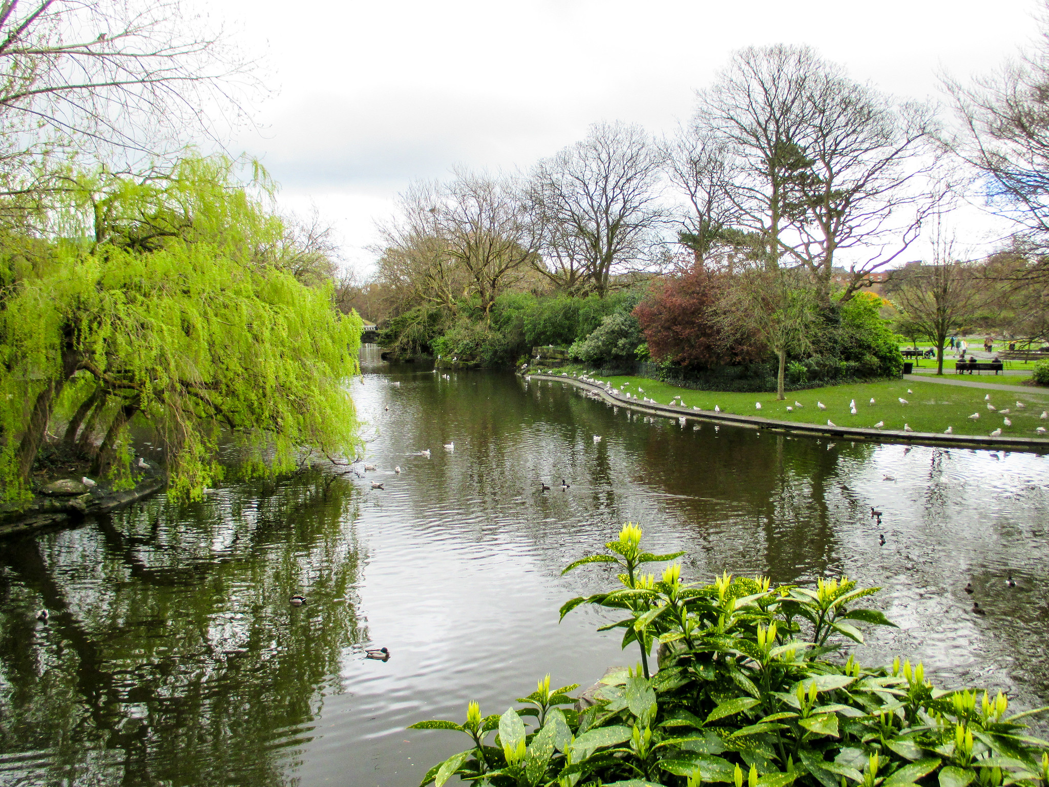 explore st stephen's green when traveling to dublin alone
