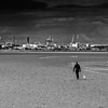 Man walking a dog in the Dublin Bay at low tide with Poolbeg Generator Plant in the background - Dublin Ireland - BW