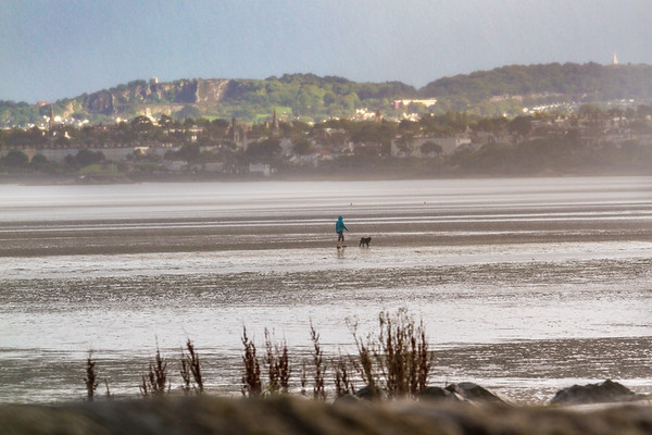 Person walking dog in the rain in the Dublin Bay at low tide with sun on the hills in the background - Dublin Ireland