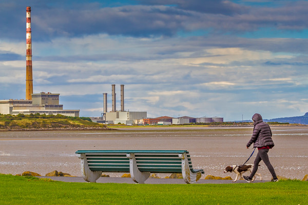 Walking a dog by Dublin Harbour during low tide overlooking Poolbeg Generator Station - Dublin Ireland