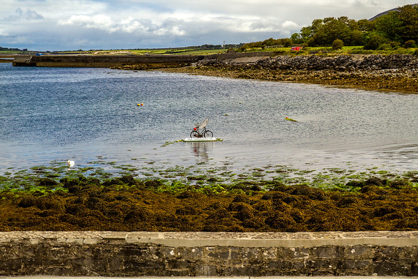 Save Galway Bay - sign on bicycle in bay