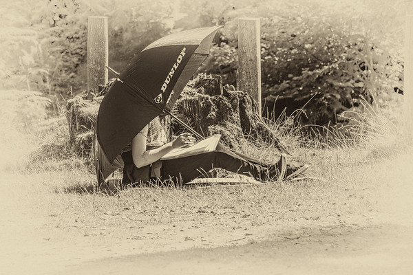 Person sitting under an umbrella on Powerscourt park in front of old tree stump - County Wicklow Ireland - Sepia with white vignette