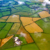 Flight into Ireland - fields and clouds