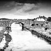 Horse in a field by a stream and stone bridge - BW