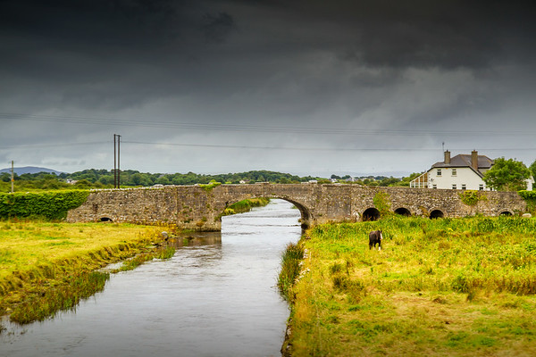 Horse in a field by a stream and stone bridge - 2