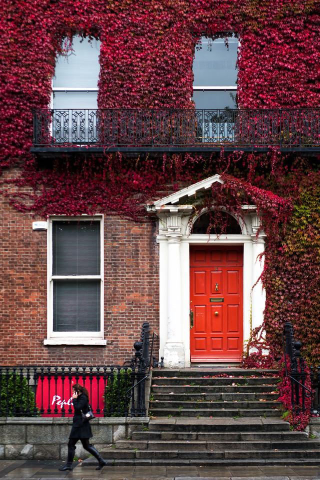 The Red Door - Dublin